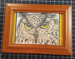 Frame owl